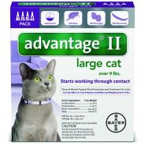 Advantage_4pk_LargeCat_Front