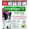 Advantage_4pk_LargeDog_Front