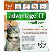 Advantage_4pk_SmallCat_Front