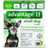 Advantage_4pk_SmallDog_Front