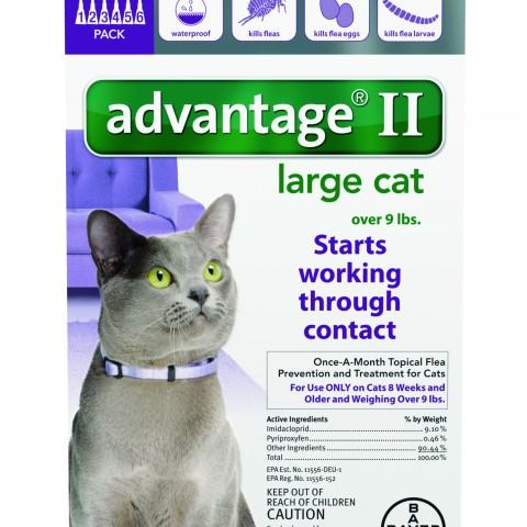 Advantage_6pk_LargeCat_Front