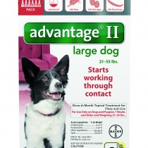Advantage_6pk_LargeDog_Front