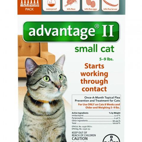 Advantage_6pk_SmallCat_Front