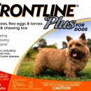Frontline Plus  0-22    orange 3 pack