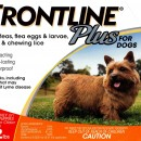 Frontline Plus  0-22    orange 12 pack